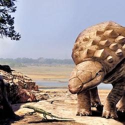 Panoplosaurus pictures