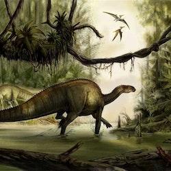 Tenontosaurus pictures