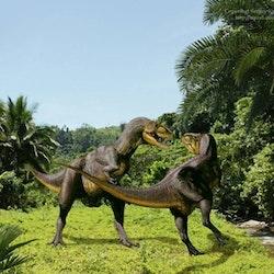 Alectrosaurus pictures