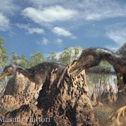 Alvarezsaurus pictures