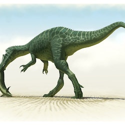 Baryonyx pictures