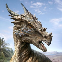 Dracorex pictures