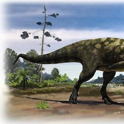Eoabelisaurus pictures