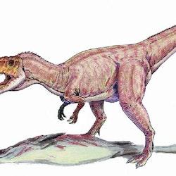 Eustreptospondylus pictures