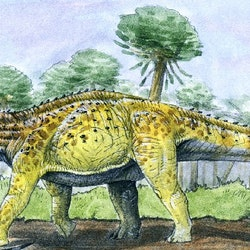 Fusuisaurus pictures