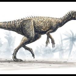 Herrerasaurus pictures