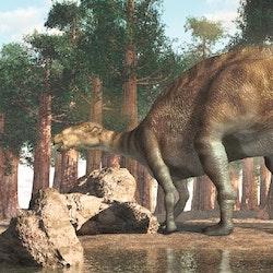 Jintasaurus pictures