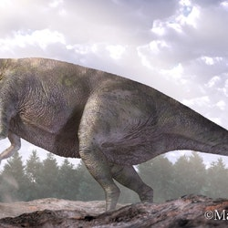 Lanzhousaurus pictures