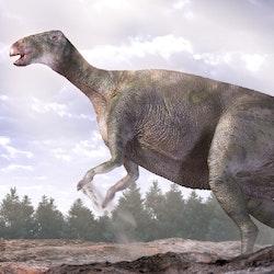 Lanzhousaurus pictures