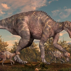 Maiasaura pictures
