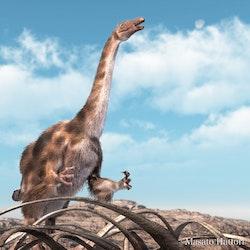 Suzhousaurus pictures
