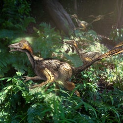 Yixianosaurus pictures