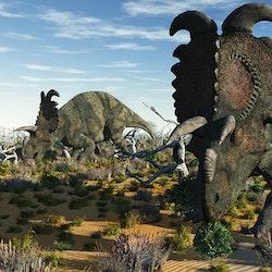 Albertaceratops pictures