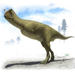 Carnotaurus pictures