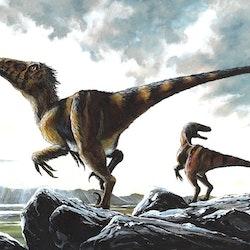 Deinonychus pictures