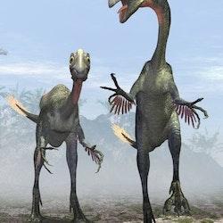 Gigantoraptor pictures