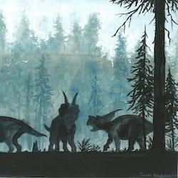 Achelousaurus pictures