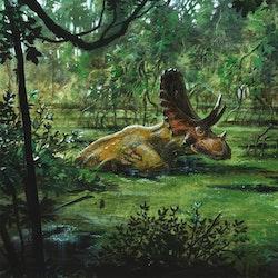 Judiceratops pictures