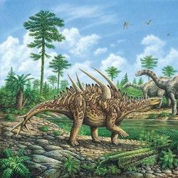 Huayangosaurus pictures