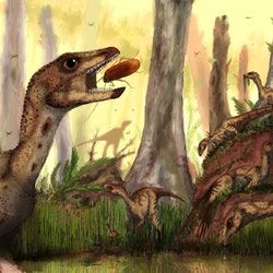 Laquintasaura pictures