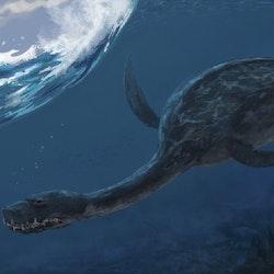 Plesiosaurus pictures