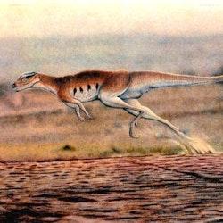 Lesothosaurus pictures