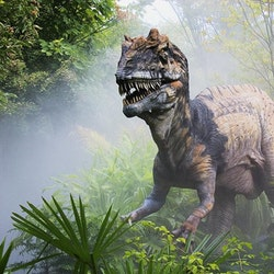 Metriacanthosaurus pictures