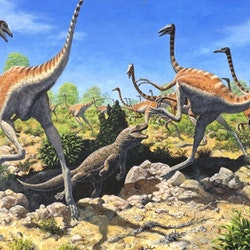 Ornithomimus pictures