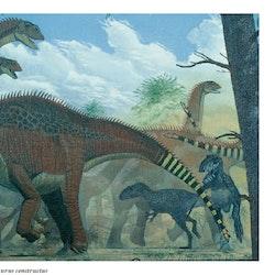 Shunosaurus pictures
