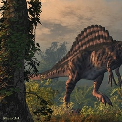 Spinosaurus pictures