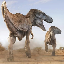 Tarbosaurus pictures