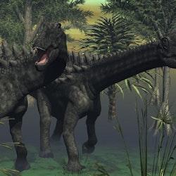Ampelosaurus pictures
