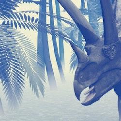 Titanoceratops pictures