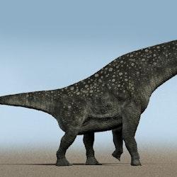 Titanosaurus pictures
