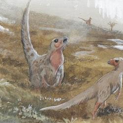 Trinisaura pictures