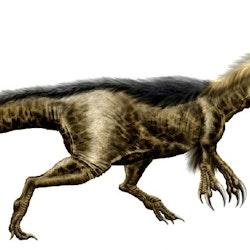 Dryptosaurus pictures
