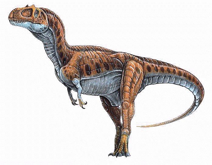 Consider, that eoraptor fun facts