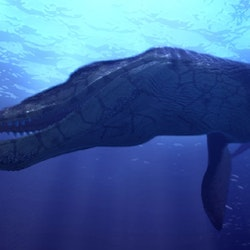 Kronosaurus pictures