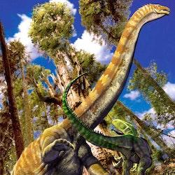 Supersaurus pictures