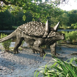 Tianchisaurus pictures