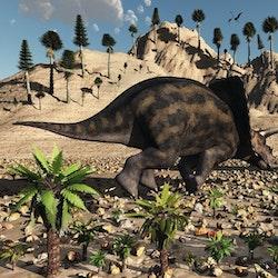Torosaurus pictures