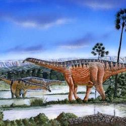 Amazonsaurus pictures
