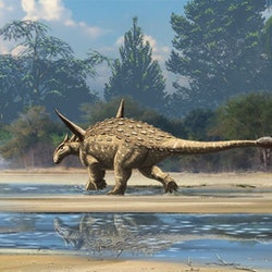 Cryolophosaurus Pictures & Facts - The Dinosaur Database