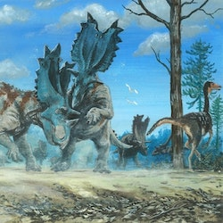 Utahceratops pictures