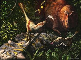 Acheroraptor pictures