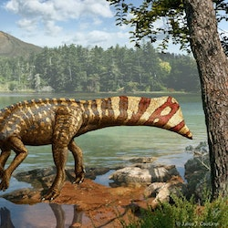 Koreaceratops pictures