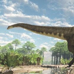 Mamenchisaurus pictures