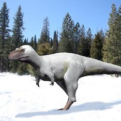 Nanuqsaurus pictures