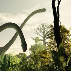 Omeisaurus pictures