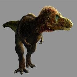 Tyrannosaurus pictures